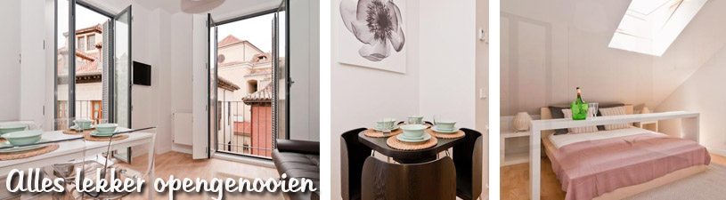 Appartementen| Luxe Home Madrid Plaza Mayor