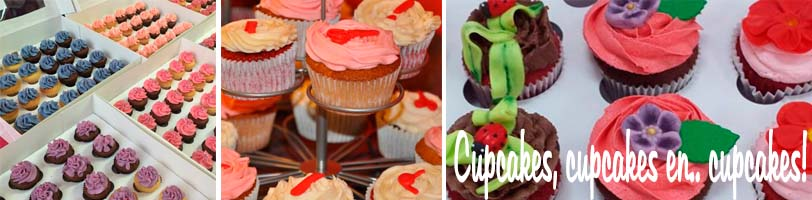 oh my cupcake